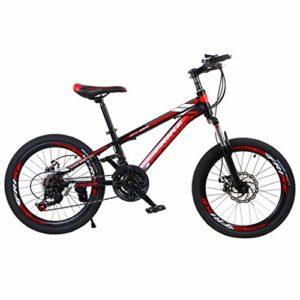 BeetleNew Vélo de montagne léger 50,8 cm pour adultes, femmes, hommes, extérieur, sport, cyclisme, équitation, petit VTT, étudiant, vélo de ville, vélo de campagne – Noir – taille unique