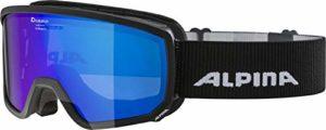 Alpina Scarabeo S mm Masque de Ski pour Adulte Noir Taille Unique