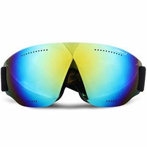 Reeamy-Home Masque de Ski Lunettes de Ski Cylindre Snowboard Lunettes Lunettes de Neige avec Lens, Anti-buée 100% UV400 Protection for Les Hommes et Les Femmes du Vent et des Lunettes de Neige
