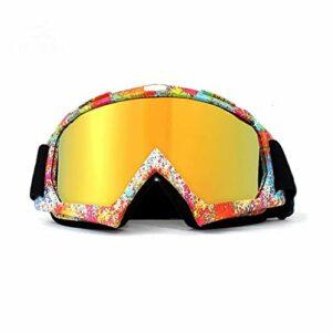 Lunettes De Ski Rétro Coupe-Vent, Lunettes De Ski Anti-buée pour Hommes Et Femmes, Lunettes De Protection des Sports d'hiver (Color : Small Flower)