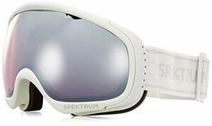 Spektrum G006 JR Masque de Ski Gris Froid Taille M