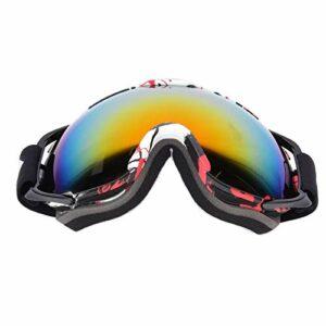 FOLOSAFENAR Lunettes de Ski universelles Anti-buée pour Le Ski(Black Frame)