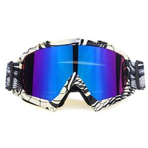 Lunettes De Moto Lunettes de moto Casque hors route Ski Casque Casque Verres de moto Eyewear Snowboard Racing Moto Bike Sunglasses Moto Lunette Moto Vintage (Color : NO6)