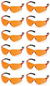 Pyramex Ztek S2510s étui à lunettes de sécurité de 12, orange